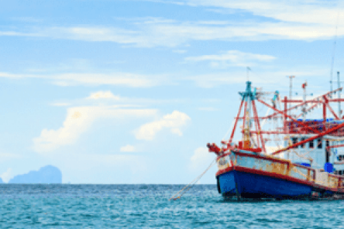 fishing-banner-808x199